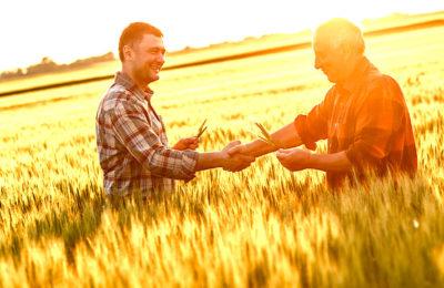 Agriculteurs en réseaux : pour cultiver aussi les échanges