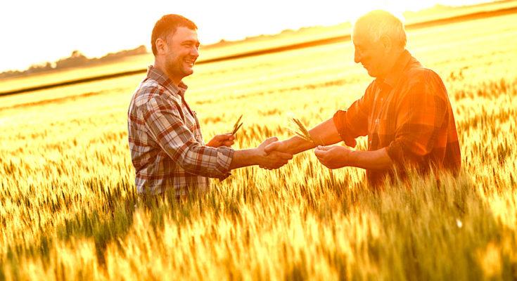 Les agriculteurs en réseaux ont des échanges beaucoup plus fréquents.