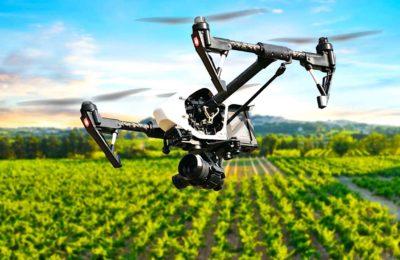 Outils de l'agriculture connectée : des aides déterminantes au quotidien