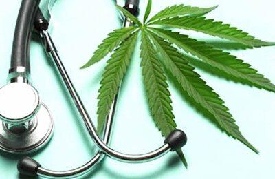 Dans un premier temps, l'usage du cannabis médical va être expérimenté en France pendant deux ans.