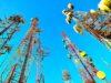 Brouillage des satellites par la 5G : un risque potentiel à surveiller
