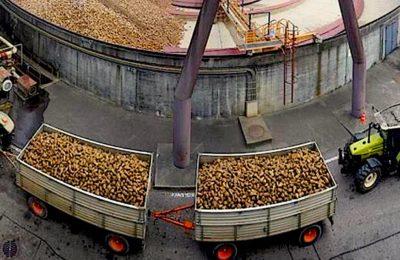 Le compostage des boues d'épuration va être réglementé par un nouveau décret.