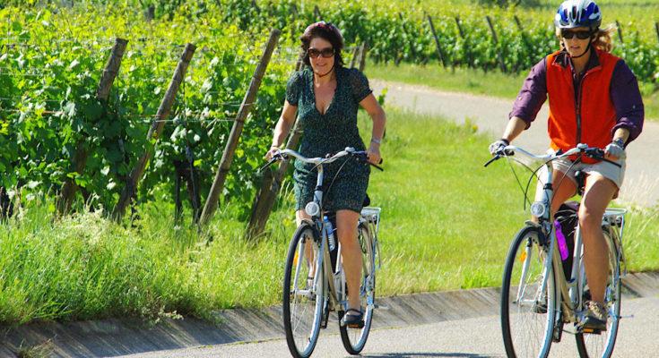 Bientôt, un agréable week-end en Alsace permettra de partir à la découverte d'excellents crus de cette région très viticole.