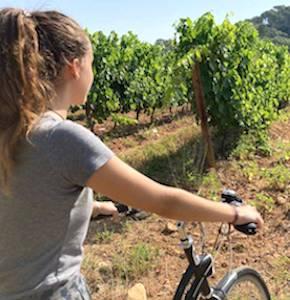 Dans quelques jours, un agréable week-end en Alsace permettra de partir à la découverte d'excellents crus de cette région très viticole.